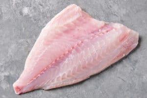 porgy fish profile