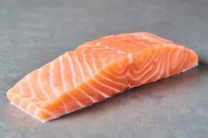 salmon fish profile