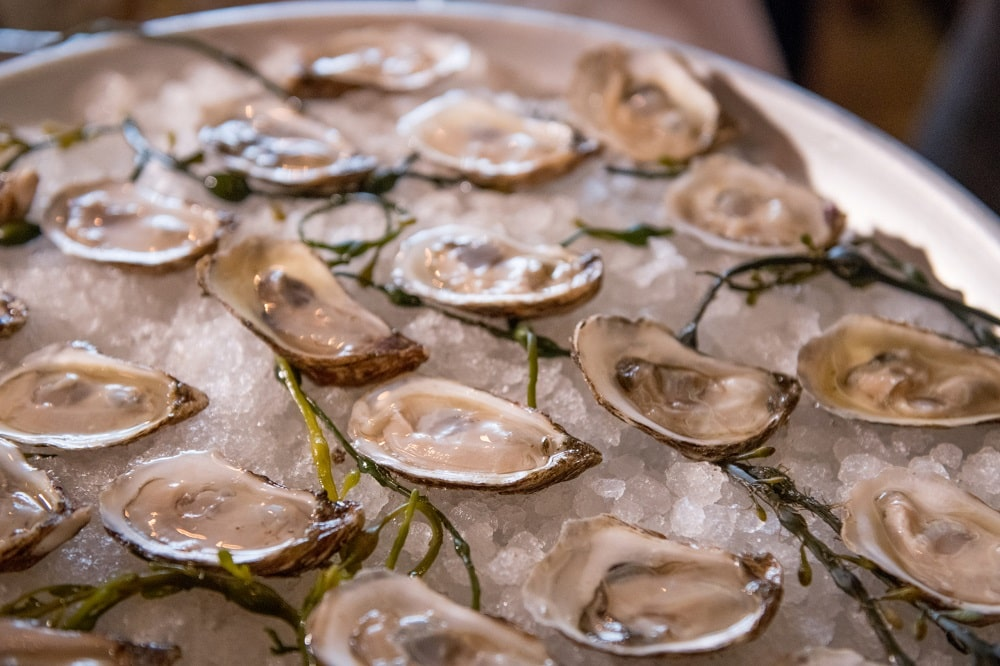 east coast vs west coast oysters